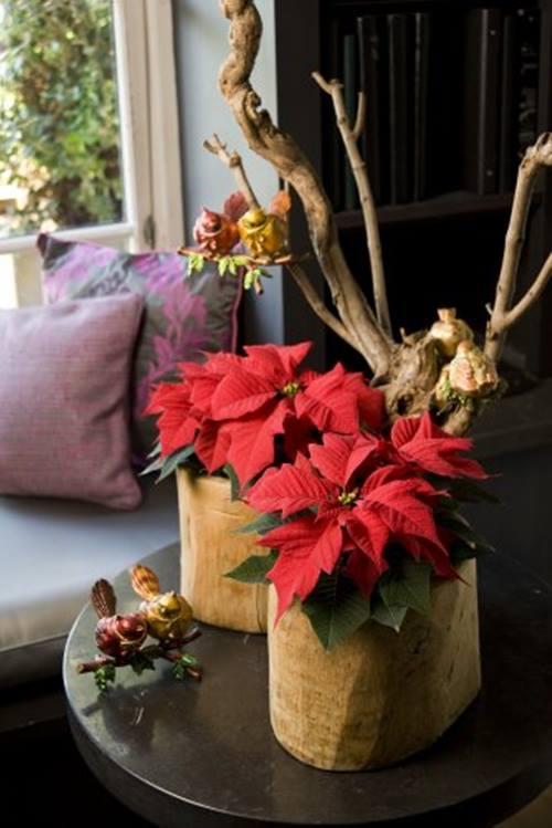 Arreglos de Navidad con flor de Pascua de estilo vintage : Decomanitas