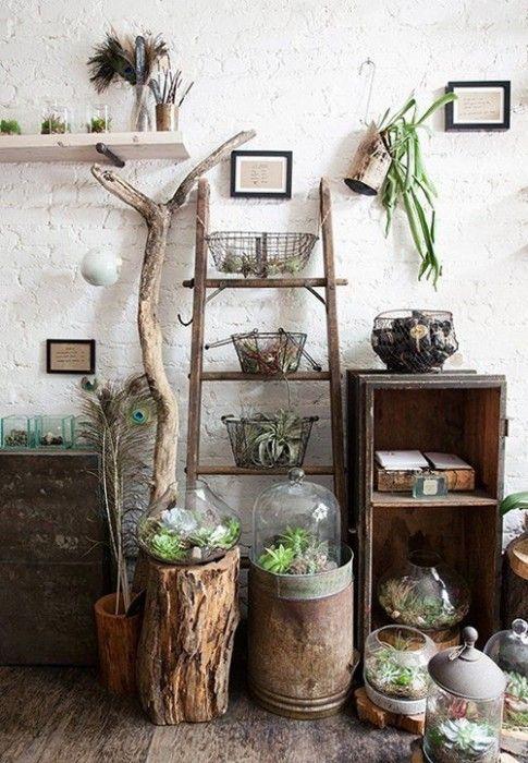 Mi casa mi selva 20 ideas para decorar con plantas de for Decoracion de espacios pequenos con plantas