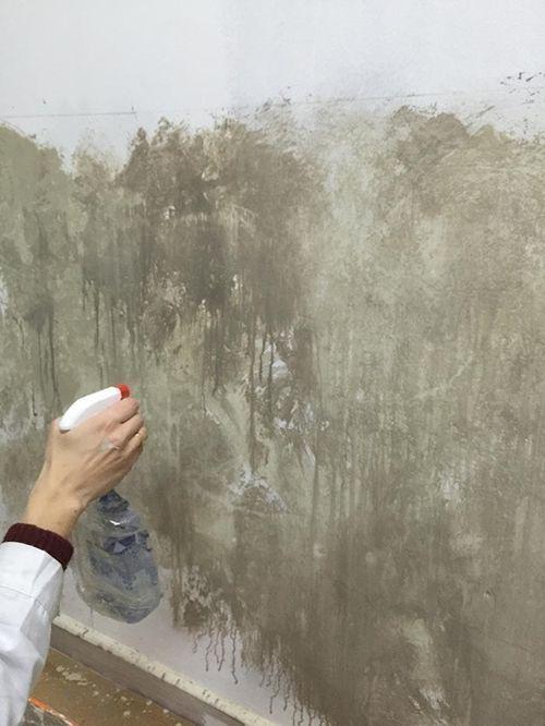 Ideas para pintar una casa paredes vintage con efecto - Pasos para pintar una pared ...