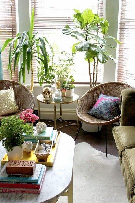 los 25 rincones con plantas de interior m s bellos de
