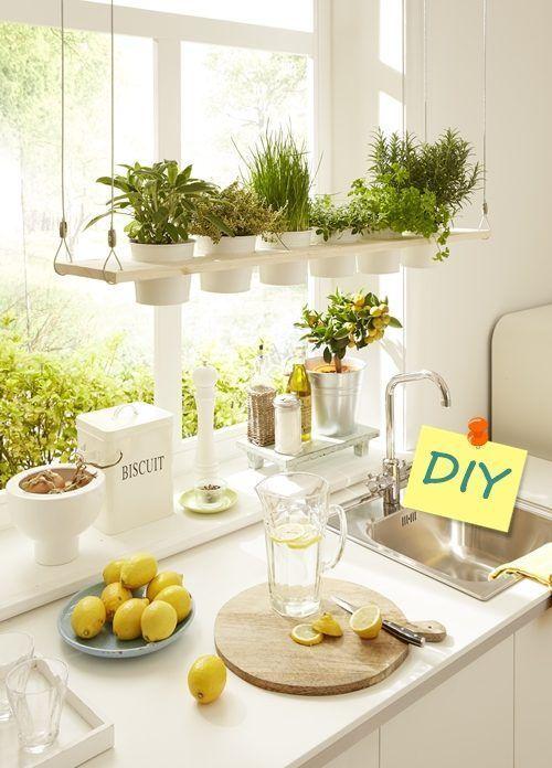 Diy decoraci n c mo hacer baldas de madera para plantas - Baldas de diseno ...