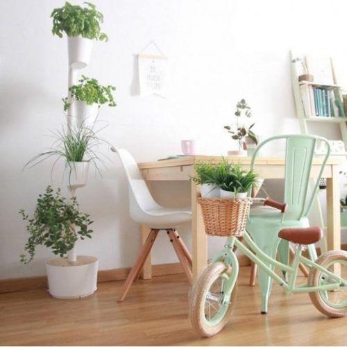 Jard n vertical o colgante en casa con curiosos sistemas for Jardin facile a entretenir